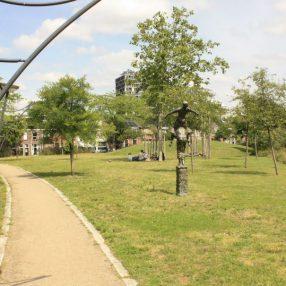 Groen verbinden in de Stad D66 Utrecht